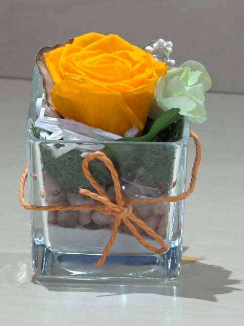 Rosa preservata arancione su vetro
