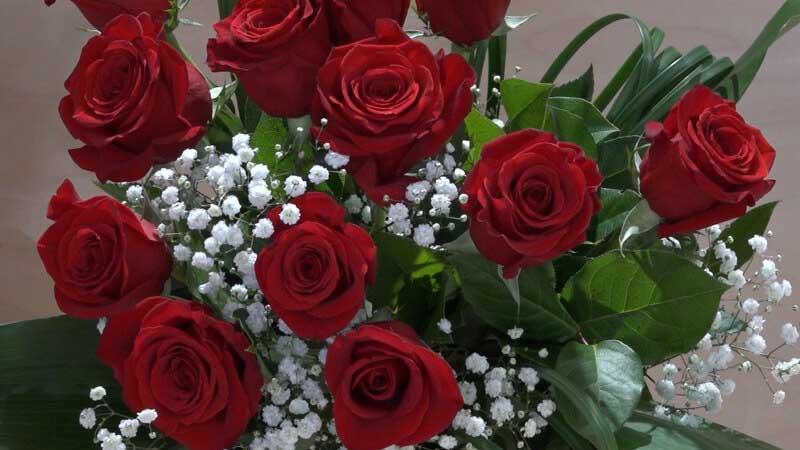 mazzo di 12 rose rosse a gambo lungo - zambon fiori treviso